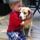 Собака для ребенка: лучшие породы для детей, рекомендации 6