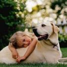 Собака для ребенка: лучшие породы для детей, рекомендации 7