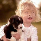 Собака для ребенка: лучшие породы для детей, рекомендации 9