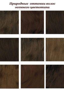 Оттенки волос Осеннего цветотипа