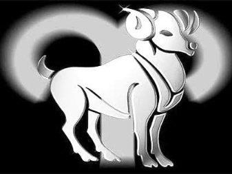 Год тигра знак зодиака овен камень
