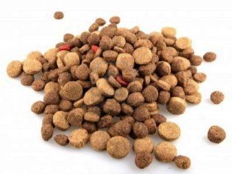 Сухой корм для британских кошек стерилизованных