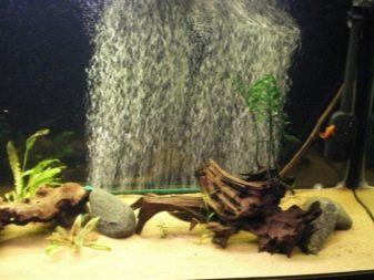 Компрессор в маленький аквариум