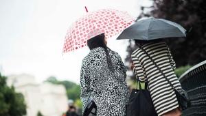 Дизайнерские и брендовые зонты