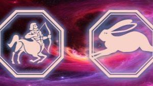 Характеристика мужчины Стрельца, рожденного в год Кролика