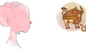 Телец, рожденный в год Свиньи: характеристика
