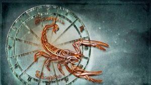 Характеристика и совместимость мужчины Скорпиона, рожденного в год Дракона