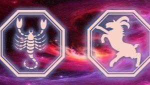 Характеристика и совместимость мужчины Скорпиона, рожденного в год Козы