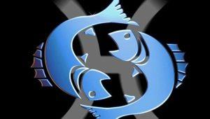 Характеристика мужчины Рыбы, рожденного в год Змеи