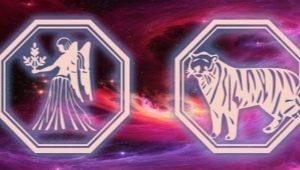 Характеристика женщины Девы-Тигра