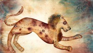 Характеристика женщины Льва, рожденной в год Крысы