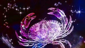 Мужчина Рак, рожденный в год Дракона: характеристика и совместимость