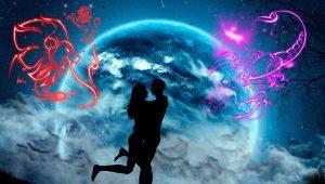 Союз Льва и Скорпиона: совместимость в любви и дружбе