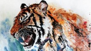 Женщина Скорпион, рожденная в год Тигра: характеристика и совместимость