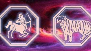 Женщина Стрелец-Тигр: характеристики и совместимость сдругими знаками
