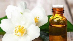 Эфирное масло жасмина – свойства и советы по применению