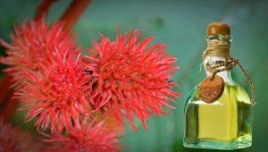 Касторовое масло для волос: применение и эффект
