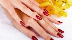 Дизайн длинных ногтей шеллаком