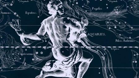 Мужчина Водолей-Петух: описание личности и особенности взаимодействия