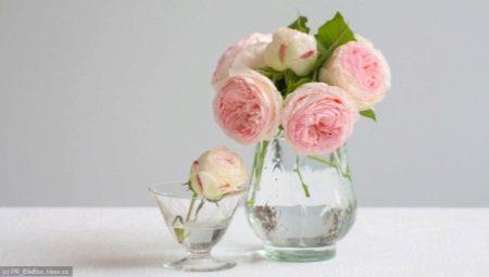 Что делать для того, чтобы розы долго стояли в вазе?