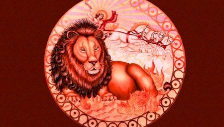 Характеристика мужчины Льва, рожденного в год Крысы