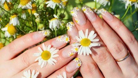 Как нарисовать цветы на ногтях: разбираем пошагово