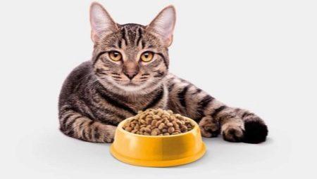 Беззерновой корм для кошек премиум класса thumbnail