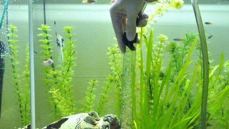 Сифоны для аквариума: выбираем пылесос для чистки грунта