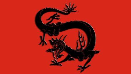 Год Дракона: характеристика символа и совместимость