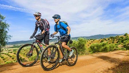 Какой велосипед лучше: Forward или Stels?