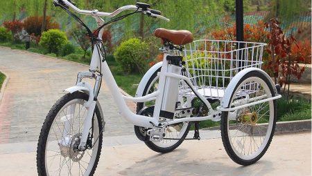 Трехколесные велосипеды для взрослых: виды, плюсы и минусы