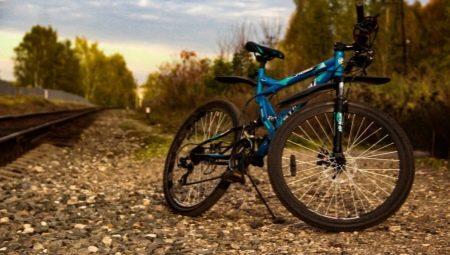 Велосипеды Stinger: особенности, лучшие модели и советы по выбору