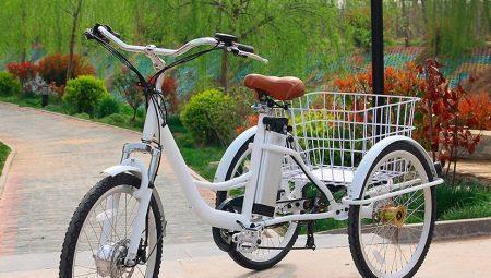 Все о грузовых велосипедах