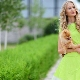 Салатовое платье - образ с нотками весенней свежести