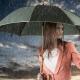 Женские зонты-автоматы