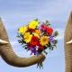 Этика и этикет: взаимосвязь понятий