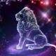 Характеристика мужчины Льва, рожденного в год Кролика