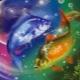Характеристика мужчины Рыбы, рожденного в год Кабана