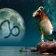 Мужчина Козерог, рожденный в год Крысы: характеристика личности и совместимость