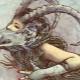 Женщина-Козерог, рожденная в год Обезьяны: характеристика личности и совместимость с другими знаками