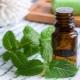 Ментоловое масло: свойства и особенности применения