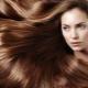 Разновидности и свойства сывороток для волос марки Ollin