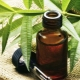 Свойства и рекомендации по применению масла чайного дерева от грибка ногтей