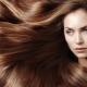 Выбираем самое эффективное масло для роста волос