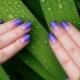 Интересные идеи для дизайна ногтей с градиентом