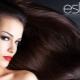 Все о красках для волос Estel