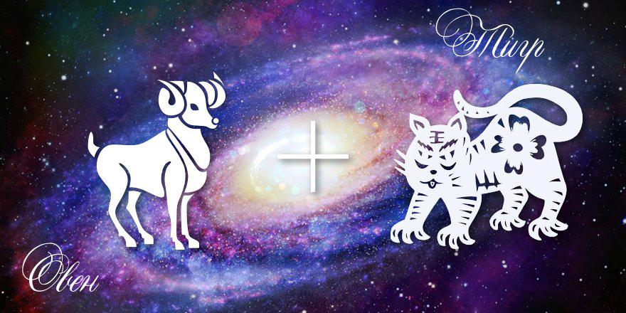 Характеристика гороскопа овен-тигр женщины и мужчины, рожденных под знаком овна в год тигра.
