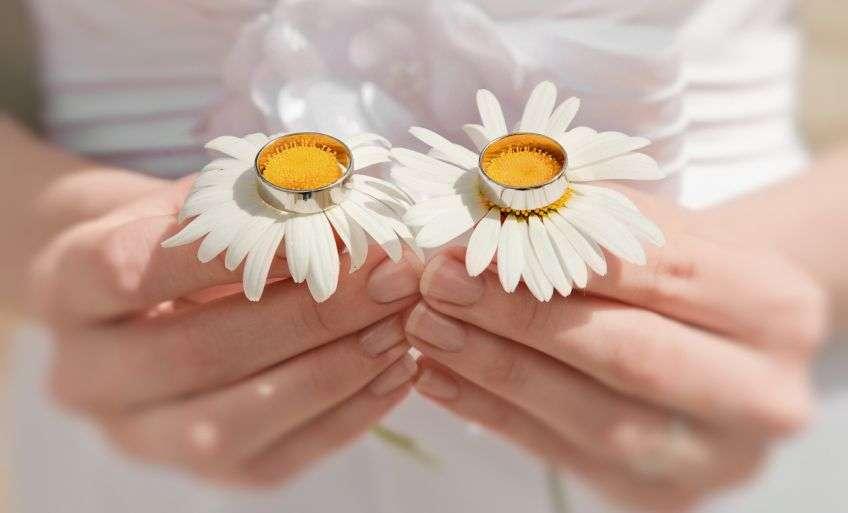 9 лет свадьбы открытка ромашковой свадьбы