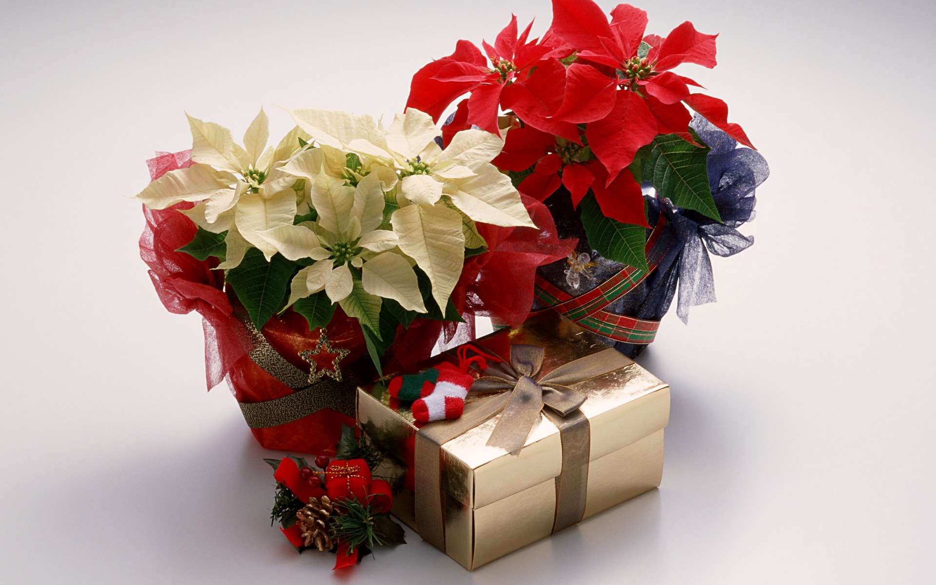Поздравления на свадьбу к символическому подарку