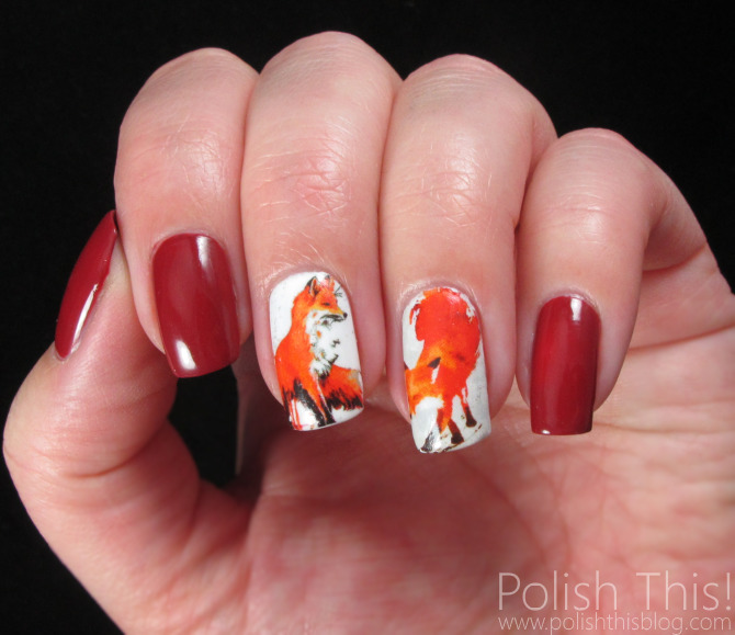 Оранжевый Шеллак Фото